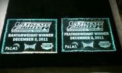 UFC bantamweight champ